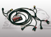Unit TFI for Harley Davidson Softail 07-11, Dyna 06-11 and Touring 07 models